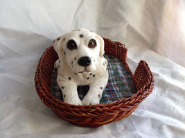 Cute Dalmatian Statue Laying in Basket Bed See Measurements Below image 4