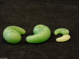 Four Jade Beads Paisley shaped image 3
