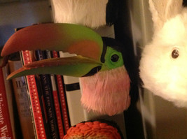 Green sulfur breast billed Toucan feathered refrigerator magnet in 3D image 2