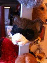 Masked Ferret  furry refrigerator magnet in 3D image 2