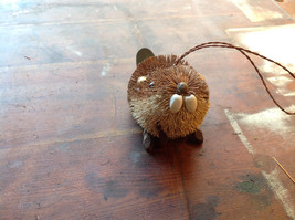 Palm Fiber Brown Beaver Brush Eco Fiber Sustainable Made in Philippines image 2