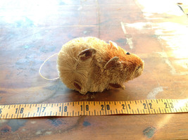 Palm Fiber Brown Hamster Brush Eco Fiber Sustainable Made in Philippines image 6