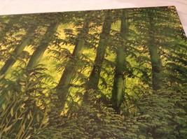 Painting Original Green Forest Vivian Gaines Tanner Hudson Valley Artist image 7