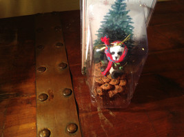 Real Pine Cone Panda Bear with Scarf Pet Pine Cone Christmas Ornament image 5