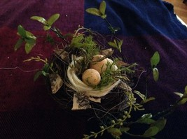 Realistic looking nest with greens and eggs spring display or teacher tool image 3
