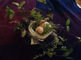 Realistic looking nest with greens and eggs spring display or teacher tool image 4