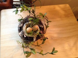 Realistic looking nest with greens and eggs spring display or teacher tool image 8