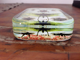 Rectangular Glass Insects Paperweight Blue Green Coral Color Design image 3