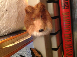 Sable Collie dog  furry refrigerator magnet in 3D image 2