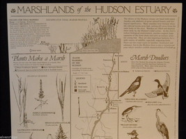 Set of 5 posters of the Hudson River image 8
