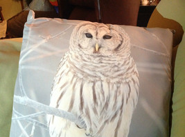 Snowy Owl on Front Gray and White Decorative Square Pillow image 2