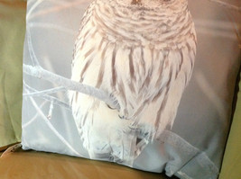 Snowy Owl on Front Gray and White Decorative Square Pillow image 3