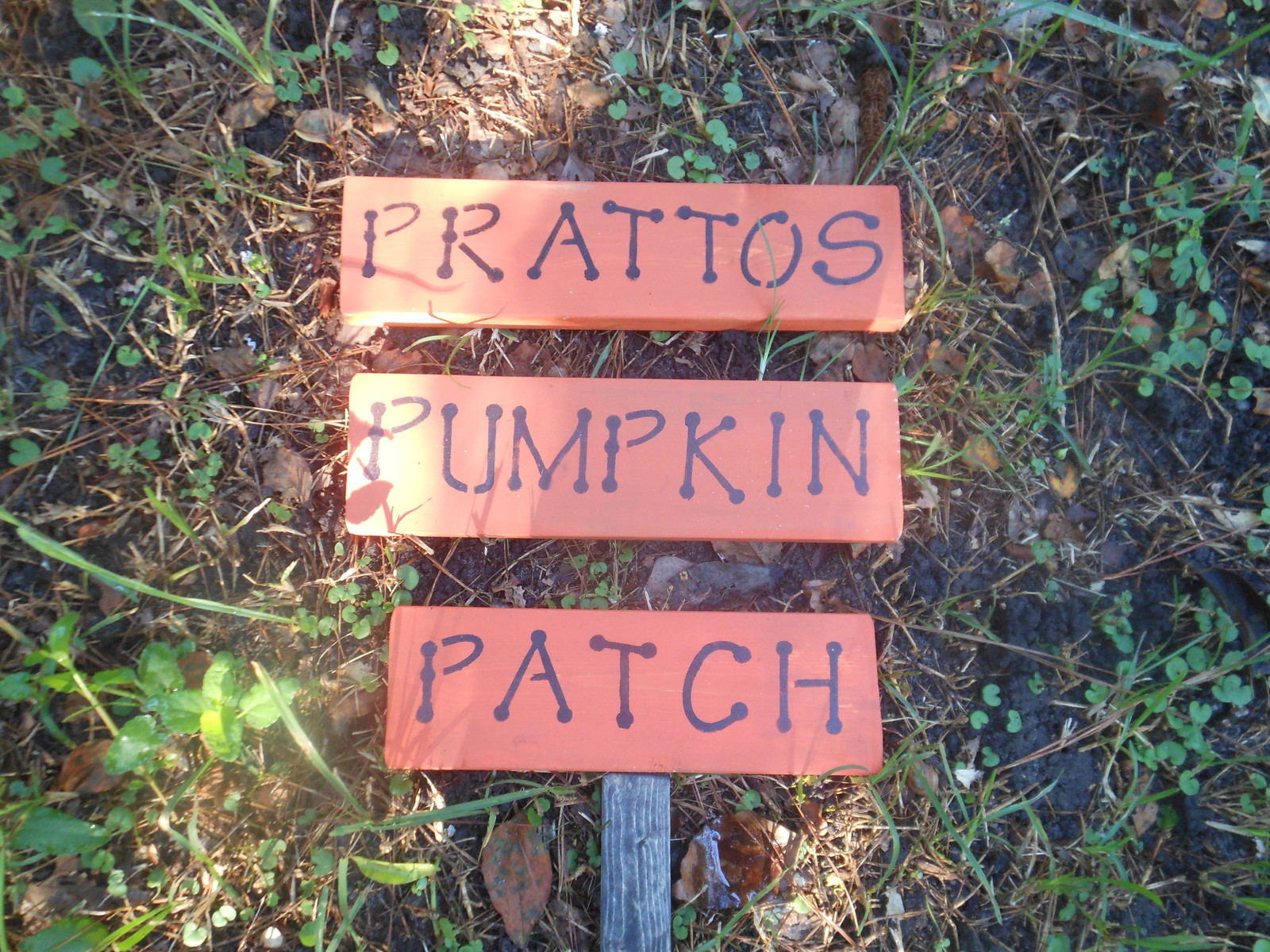 Pumpkin personalized yard sign other for Outdoor christmas signs