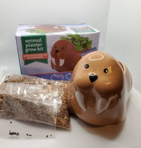 Walrus Animal Planter Grow Kit, ceramic pot with soil and mint herb seeds image 2