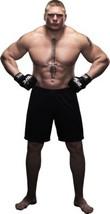 Brock Lesnar 24X36 Poster LHW #LHG312820 - $24.97