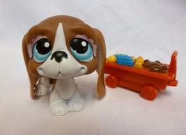 Littlest Pet Shop #1205 Brown & White Basset Hound Puppy Dog w/ Pink Bows - $10.38
