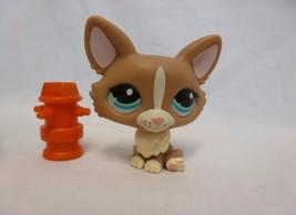 Littlest Pet Shop #1864 CORGI PUPPY DOG Brown Cream Teal Green Eyes lps - $10.38