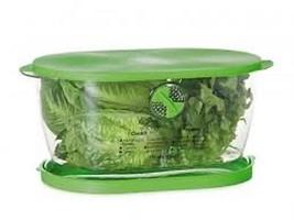 Lettuce Vegetable Fruit Saver Keeper Crisp Refrigerator Storage Container - $18.97
