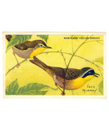 1947 Kellogg Krumbles Cereal Bird Picture Series B F2732b Maryland Yello... - $3.95