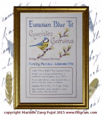 Eurasian Blue Tit Ornothological Index Card cross stitch chart Filigram