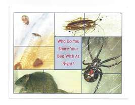 Modern Advertising Postcard Exterminator Pest Control Rat Cockroach Spid... - $6.69