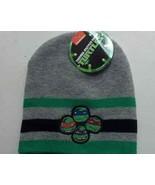 Ninja Turtle Beanie Hat Green / Blue / Grey Stripe One Size Men Boys w/ ... - $11.60
