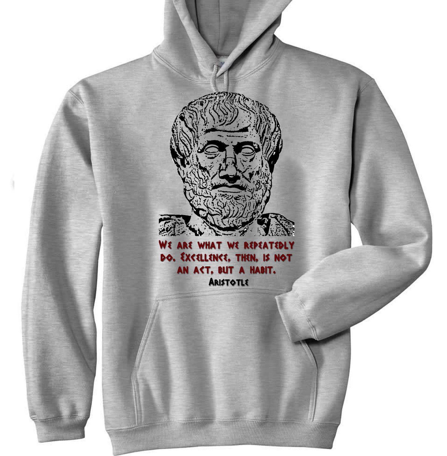 Primary image for ARISTOTLE - NEW COTTON GREY HOODIE - ALL SIZES IN STOCK