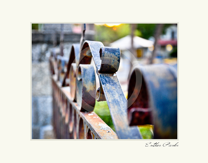 'Old St. Augustine Fence' Fine Art Print - 8x10 print matted to11x14
