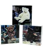 """Gund Set of 3 Vintage Teddy Bear Glass Paper Weights 3-1/2"""" Square Assor... - $19.79"""