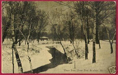 ST LOUIS MISSOURI Forest Pk Winter Trees Stream 1909 MO