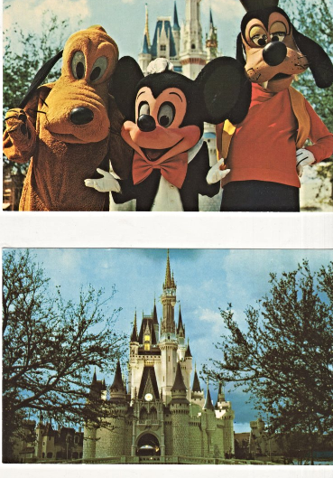 Primary image for Postcards - Walt Disney World - (5 Postcards & 2 Pictures)
