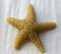 Star Fish Thread Waxer 100% beeswax thread detangler Lady Dot Creates  - $4.50