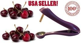 USA Seller Cherry Pitter Olive Stoner Corer Hand Held Seed Remover Cherr... - $6.43