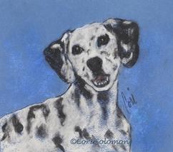 Dalmatian Dog Art Pastel Drawing Spots Solomon - $80.00