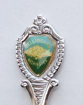 Collector Souvenir Spoon USA Washington Bellingham Tear Drop Map Bowl - $4.99