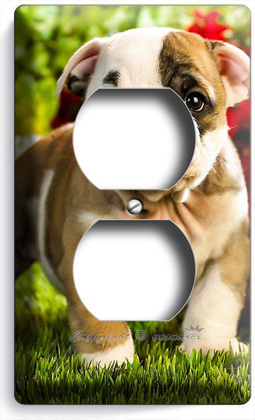 CUTE FRENCH BULLDOG PUPPY DOG OUTLET WALL PLATE COVER BEDROOM ROOM HOME HD DECOR - $8.99
