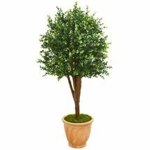 "Multicolor 52"" Eucalyptus Artificial Tree in Terra-Cotta Planter UV Resistant (I - $301.74"