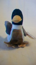 Jake the Mallard Duck Ty Beanie Baby DOB April 16, 1997 2 errors - $6.92