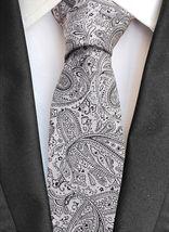 Berlioni Italy Men's Classic Paisley Striped Necktie Tie Handkerchief Gift Set image 5
