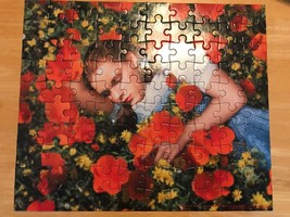 The Wizrd of Oz 100 Piece Puzzle Dorothy in the Poppy Fields Garland Complete - $14.97