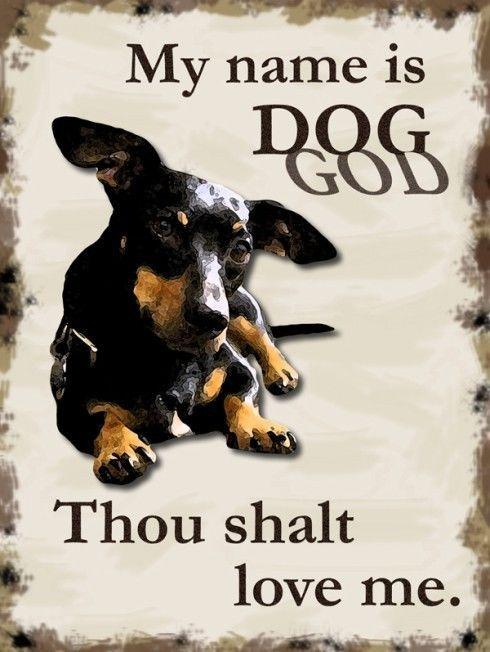 My Name is Dog God Animal Humor Pet Metal Sign