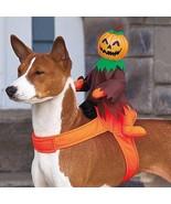 CUTE Ride-On Jack-O-Lantern Pumpkin Halloween Dog Costume - $30.69