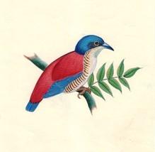 Indian Bird Art Handmade Ornithological Wild Life Miniature Folk Decor P... - $69.98