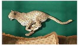 African Sahara Wildlife Fastest Land Animal Rac... - $150.58