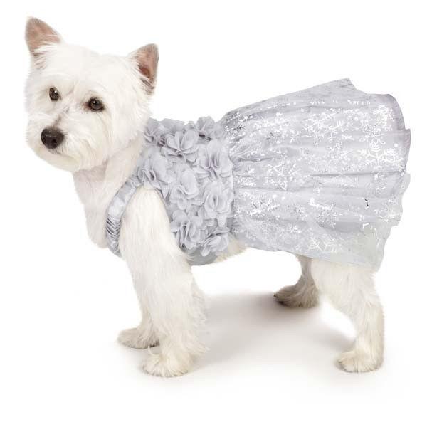 Dog Dress Shimmer Nights Whitney Dress Pet BRAND NEW Fancy Winter Holiday