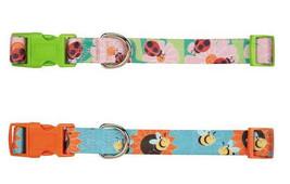Zack & Zoey Flutter Bugs Nylon Dog Collar Collars Pet Lady Bug Bee Dogs ... - $8.99+