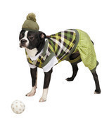 Casual Canine Putter Pup Golf Dog Halloween Costume Pet costumes XS-XXL - $13.50
