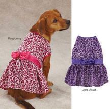 Vibrant Leopard Dog Dress Dog Pet Party East Side Collection Animal Print - $9.99+
