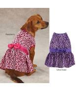 Vibrant Leopard Dog Dress Dog Pet Party East Side Collection Animal Print - $9.99 - $20.99
