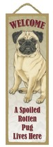 """Spoiled Rotten Pug Tan Lives Here Sign 5"""" x 15"""" Plaque Gift pet dog - $13.98"""